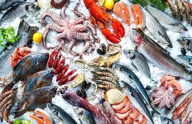 Kỹ Năng Chọn Hải Sản Tươi Ngon Của Đầu Bếp Chuyên Nghiệp
