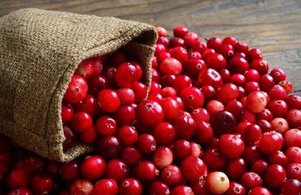Cranberry la gi