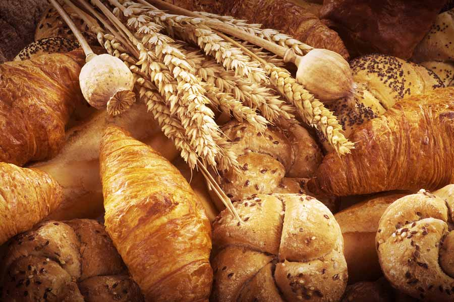 Khóa học làm bánh mì. Dạy làm bánh mì 01
